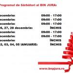 program-sarbatori-iarna